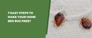 MAKE YOUR HOME BED BUG FREE